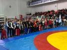 VIII Фестиваль спортивных единоборств на призы Председателя МГО ВФСО «Динамо» _4