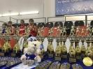 VIII Фестиваль спортивных единоборств на призы Председателя МГО ВФСО «Динамо» _6